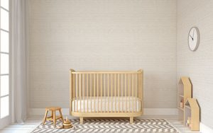 Paint for Baby Crib